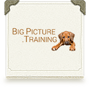 Training-Graphic_BigPicture