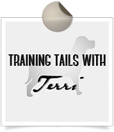training tails with terri